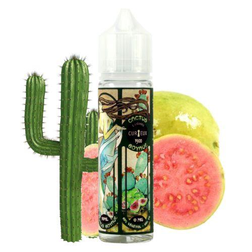 Prêt à booster Cactus Goyave 1900 Curieux