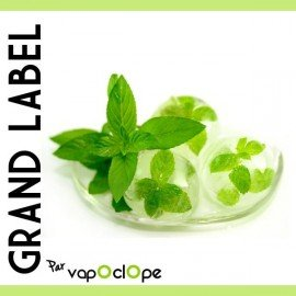 E-liquide Menthe Glaciale 10ml (Grand Label Classique)