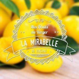 E-Liquide Mirabelle 10ml (VDLV)