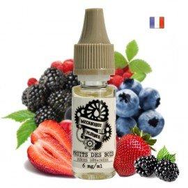 E-Liquide Fruits des Bois 10ml (Mécanique des Fluides)