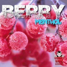 Arôme Berry Menthol 30ml (vampire vape)